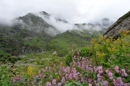 Trekking In India Himalayas Uttaranchal Garhwal Trekking In